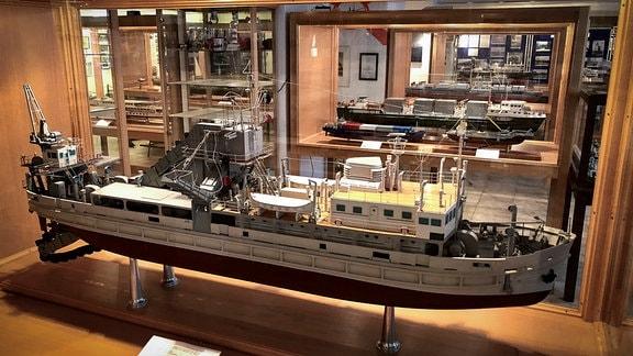 Tausende Exponate und dutzende Schiffsmodelle haben die Männer vom Schifferverein über die Geschichte ihrer Werft zusammengetragen.