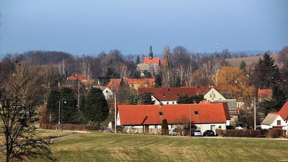 Blick über ein Feld zu einigen weißen Häusern mit roten Dächern.