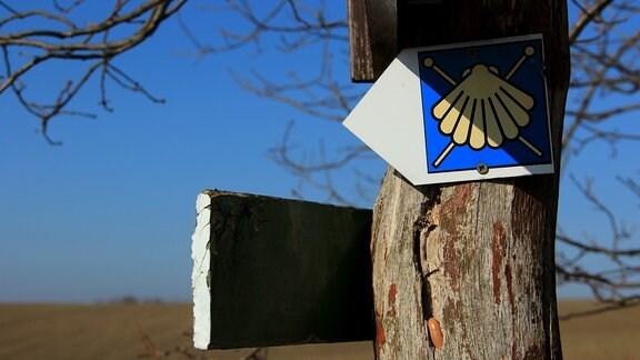Ein pfeilförmiges Schild mit der Darstellung einer Muschel an einem Wegweiser.