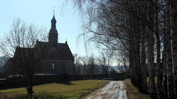 Ein Feldweg entlang einiger Birken führt zu einer Kirche.