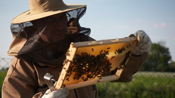 Den Imkerbrüdern Frank und Thomas Jasmer kämpfen um jeden Tropfen Honig.