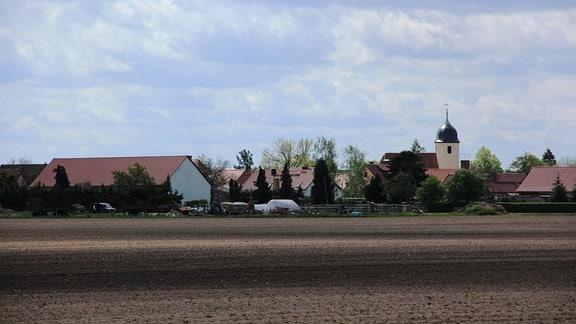 Im Norden von Sachsen, beinahe schon im brandenburgischen, liegt Döbrichau, ein kleines Dorf mit etwa 350 Einwohnern.
