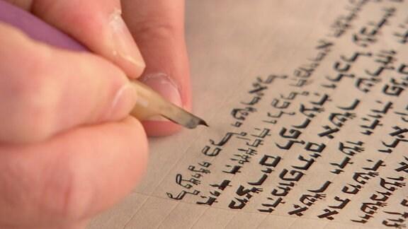 Schreiben an einer Tora.