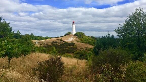Landschaft mit Leuchtturm auf Hiddensee