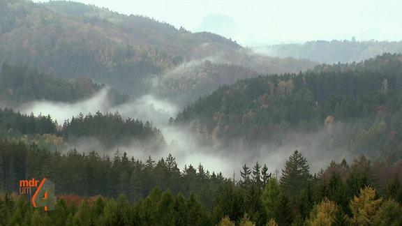 Der Nationalpark Sächsische Schweiz im Elbsandsteingebirge.