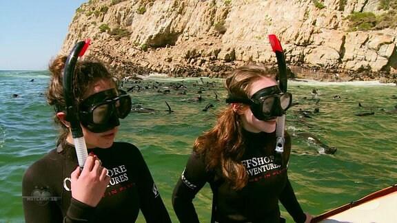 Die Mädchen sollen mit Robben schwimmen.