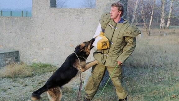 Der Schäferhund Olf wird ausgebildet.