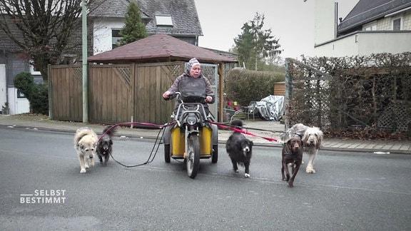Susanne Müller führt die Hunde aus.