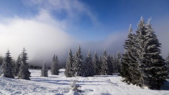 Landschaft aus Eis und Schnee im Riesengebirge.