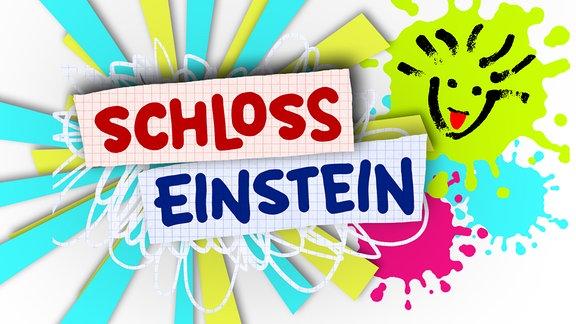 Logo Schloss Einstein