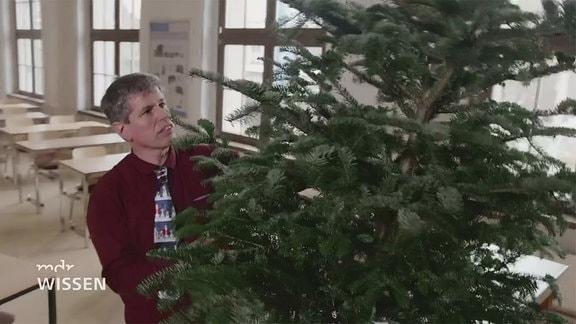 Mann mit Weihnachtsbaum
