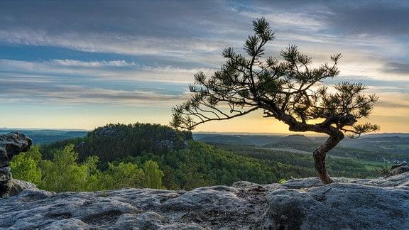 Screenshot aus Sächsische Schweiz - Wald, Stein, Fluss