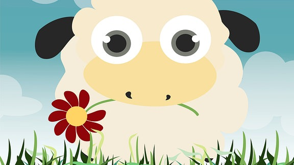 Illustration eines Schafes.