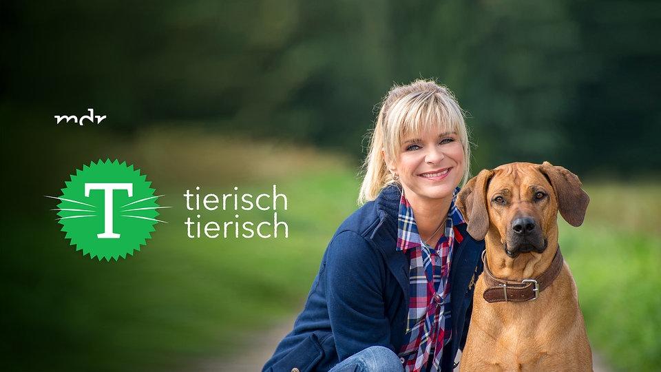 Tierisch Tierisch Mediathek