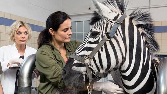 Tierärztin Dr. Mertens (Elisabeth Lanz) und das kranke Zebra. Zusammen mit ihrer Assistentin Annett (Anna Bertheau) wartet sie auf wichtige Laborergebnisse.