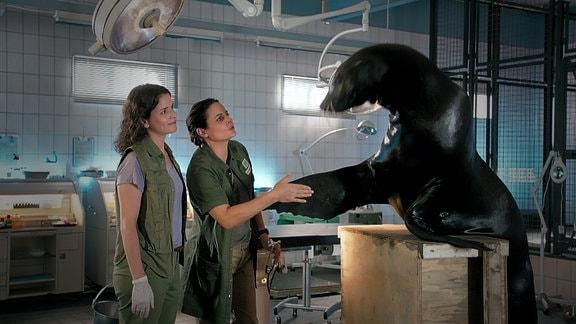 Tierärztin Dr. Mertens gibt einem Seehund die Hand