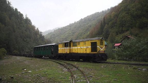 Eine Schmalspurbahn in den Karpaten