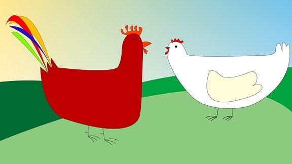 Huhn und Hahn Zeichnung