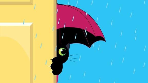 Eine Katze im Regen