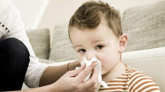 Eine Frau hält ein Taschentuch an die Nase eines kleinen Jungen.