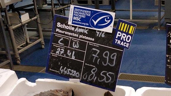 Frischer Fisch mit MSC und Pro Trace Siegel