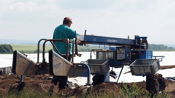 Spargelspinne - Maschine, die bei der Spargelernte hilft