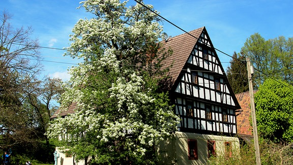 Der ehemalige Pfarrhof, ein Fachwerkhaus
