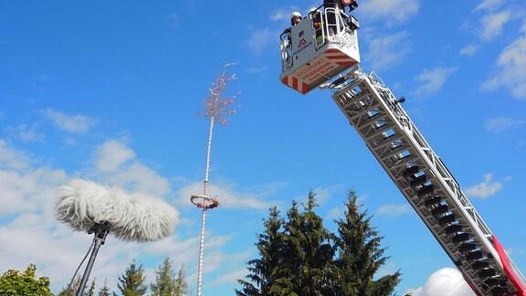 Eine Feuerwehrdrehleiter neben einem Maibaum.