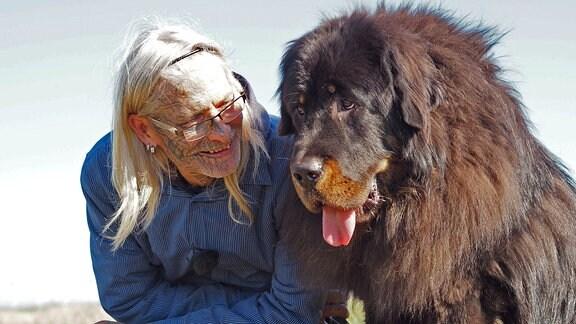 Ein Mann mit grauen langen Haaren hockt neben einem tibetischen Herdenschutzhund – einem Tibet Mastiff.