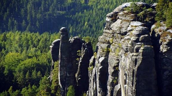 Moderator Axel Bulthaupt zu Besuch in der Sächsisch-Böhmischen Schweiz