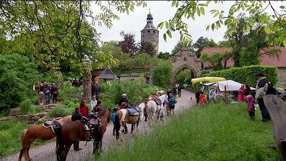 Pferde mit Sätteln stehen vor einem Burgeingang.