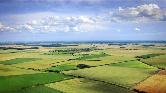 Landschaft der Altmark