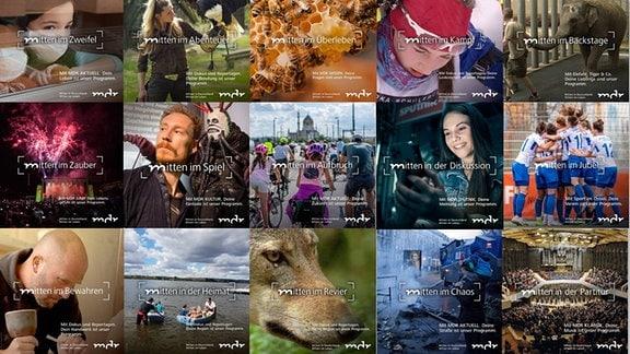Bilder der MDR-Kampagne