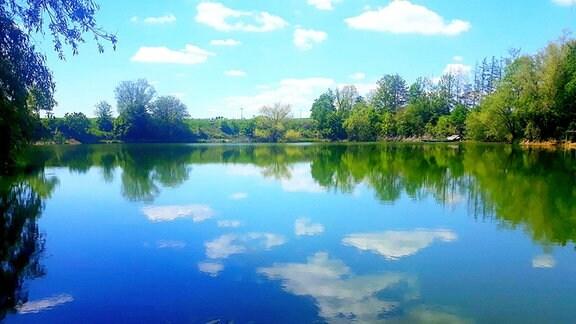 Der blaue Himmel spiegelt sich in einem Teich