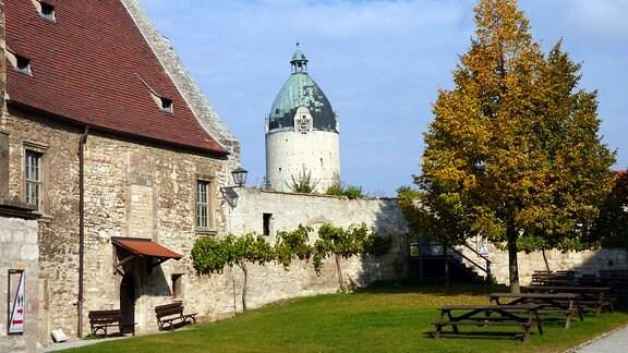 Der Bergfried Dicker Wilhelm ist der letzte und einzig erhaltene Rundturm der Neuenburg. Köhlerei