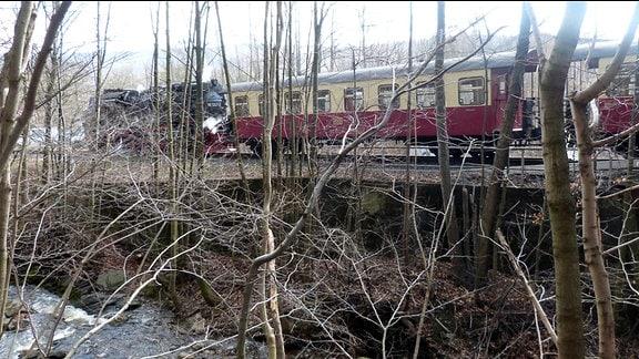 Beim Harzwandern darf sie nicht fehlen: die Harzer Schmalspurbahn