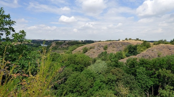Blick über grüne hügelige Landschaft
