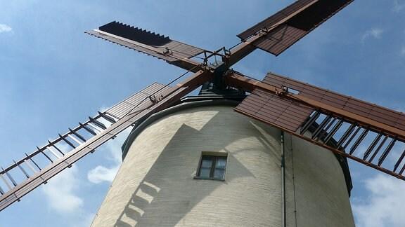 Die fein sanierten Räder der Windmühle von Syrau