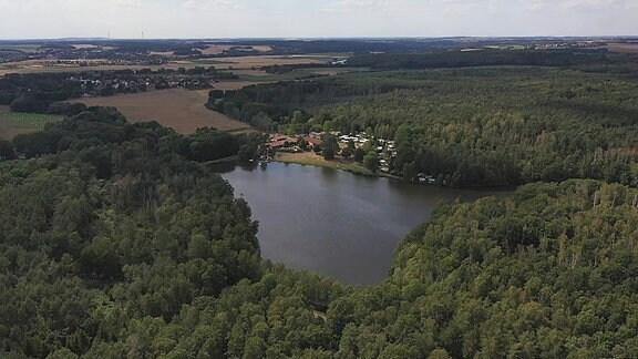 Blick von oben auf einen See umringt von Bäumen.