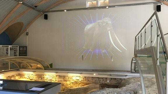 Elefanten, Löwen, Nashörner und die ersten aufrecht gehenden Menschen - die Bewohner des eiszeitlichen Bilzingslebens werden dank Animationstechnik für die Besucher wieder lebendig.