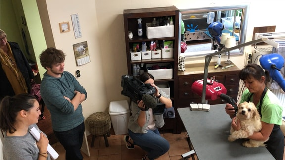 Azubi Luisa an der Kamera; Kerstin Matkowitz Föhnt ihren Hund Honey