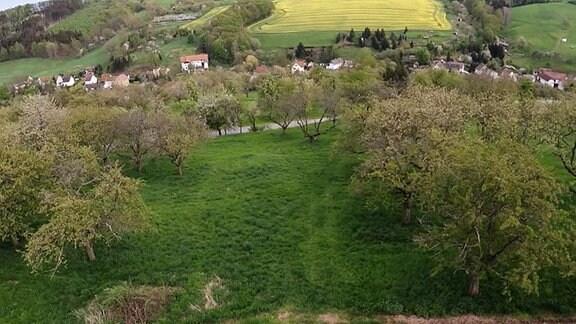 Luftbild von einem Dorf.