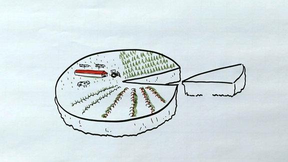 Die DDR-Landwirtschaft war geprägt durch die LPGs. Die bewirtschafteten riesige Flächen. Privatbauern gab es eigentlich nicht. Doch dann kam die Wende.