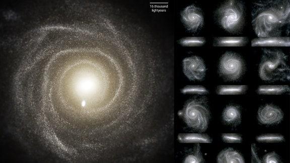 Scheibengalaxien aus der TNG50-Simulation im sichtbaren Licht. Für jede Galaxie gibt es eine Sicht von oben und eine von vorne