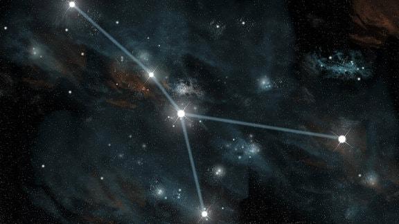Das Sternbild Krebs