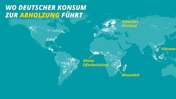 Karte zeigt, wo auf der Welt durch deutschen Konsum viel Wald abgeholzt wird. Beispielhaft herausgestellt sind folgende Länder: Schweden/Finnland, Ghana/Elfenbeinküste, Mosambik, Vietnam