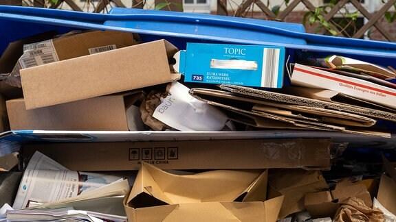 Übervoller Müllcontainer für Altpapier in Berlin