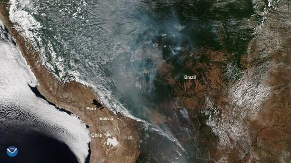 Satellitenbild des mittleren Teils des südamerikanischen Kontinents. Darauf sind deutlich große Rauchwolken im Amazonas-Gebiet zu erkennen.