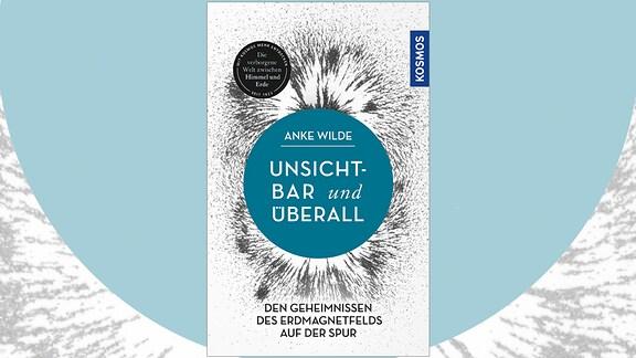 Anke Wilde: Unsichtbar und überall. Den Geheimnissen des Erdmagnetfelds auf der Spur