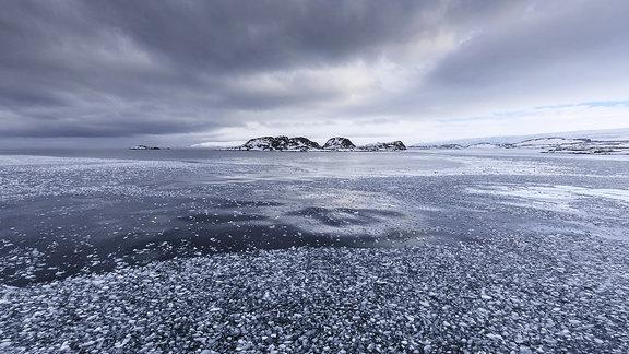 Torgersen Island